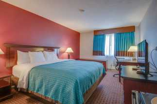 Vagabond Inn Executive Hayward - Vagabond Inn Executive - King Bed Room