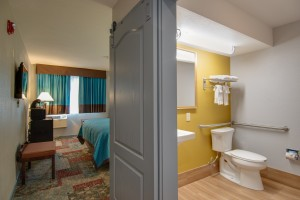 Private bathroom in King Standard