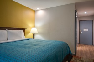 Vagabond Inn Executive Hayward - Modernly appointed rooms with Free WiFi
