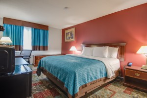 1 King Bedroom at Vagabond Executive Inn Hayward